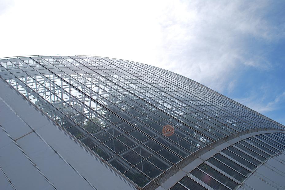 Adelaide (11)