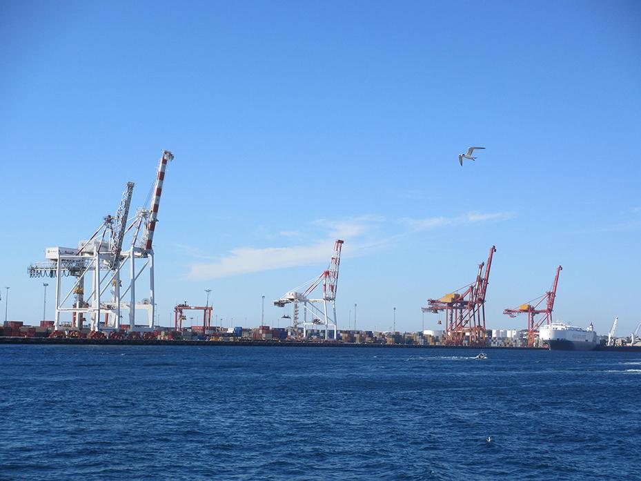 Fremantle (3)