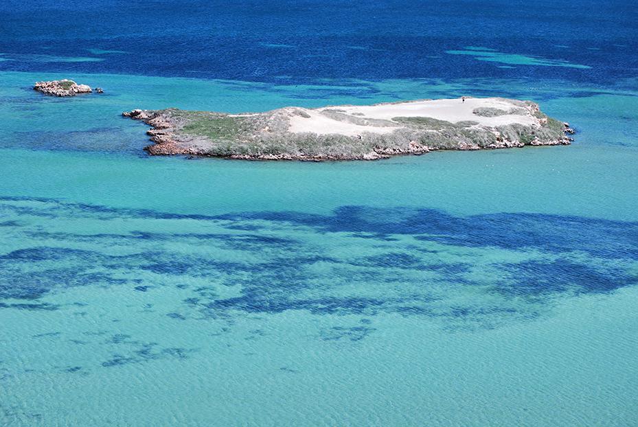 Shark-Bay (10)