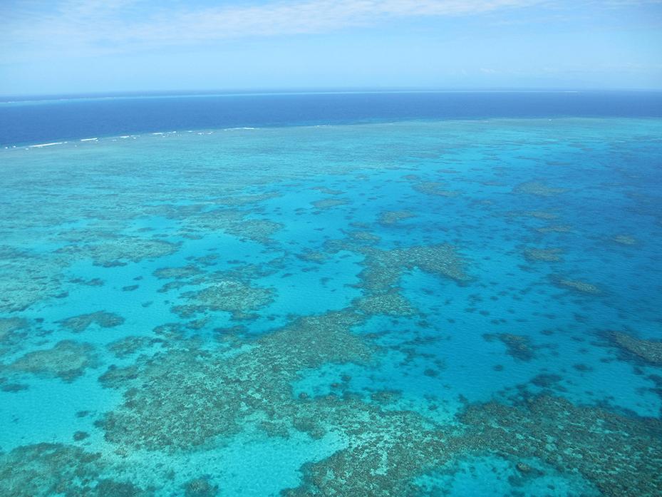 Cairns (3)