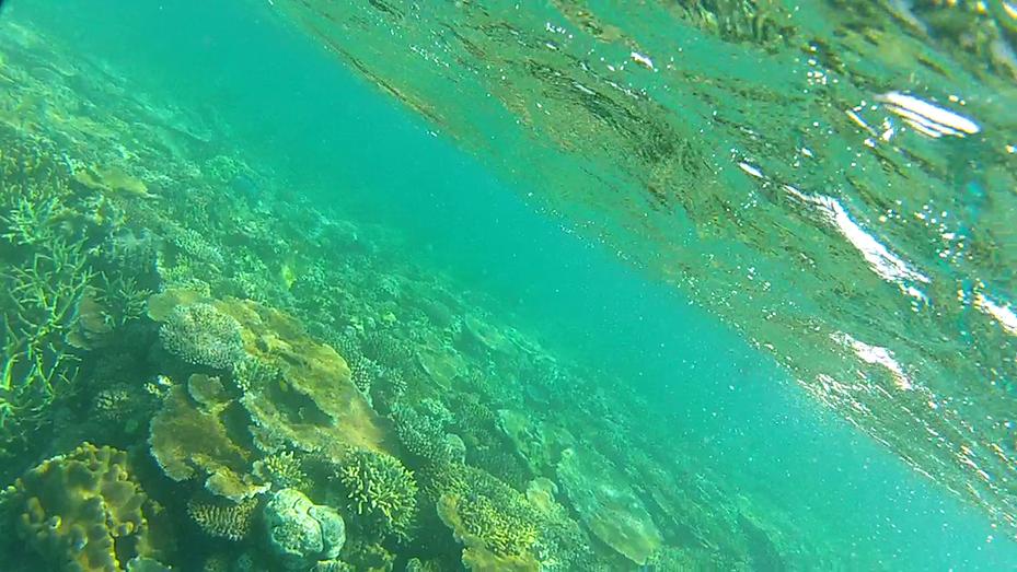 Cairns (9)