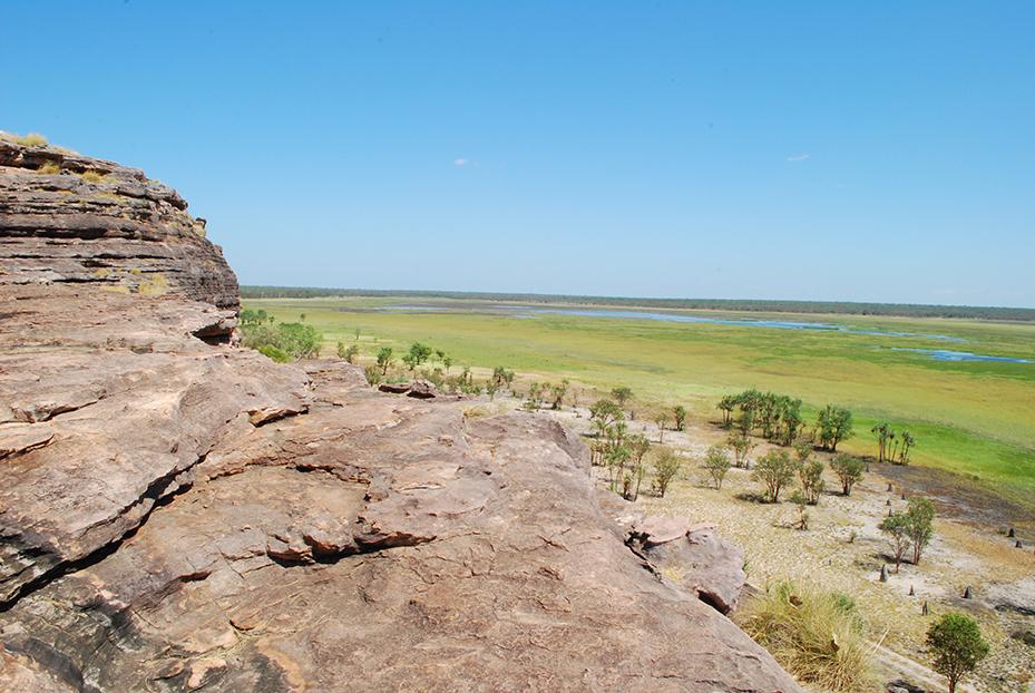 Kakadu (1)