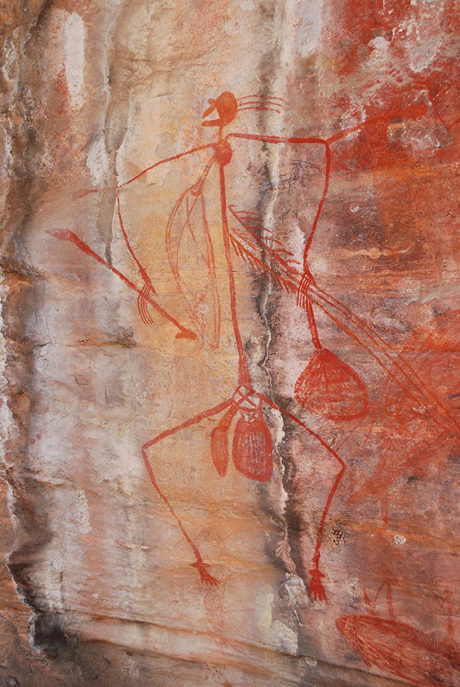 Kakadu (4)